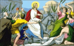 Palm Sunday - Thoughts on a Homily that didn't Happen.
